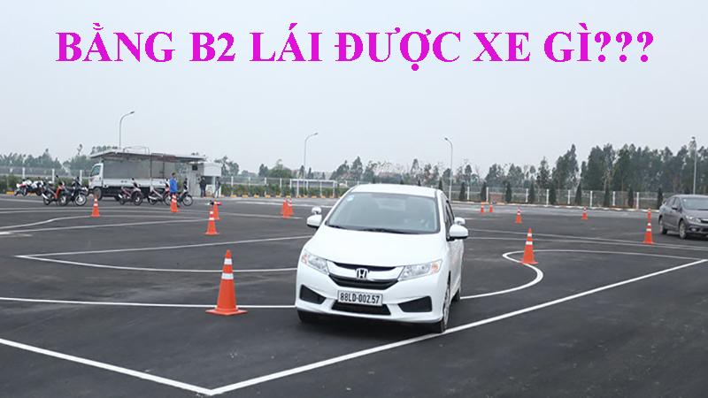 Bằng B2 lái được xe gì?